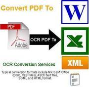 Patel Infosoft - Pdf to doc Conversion Homebased Work